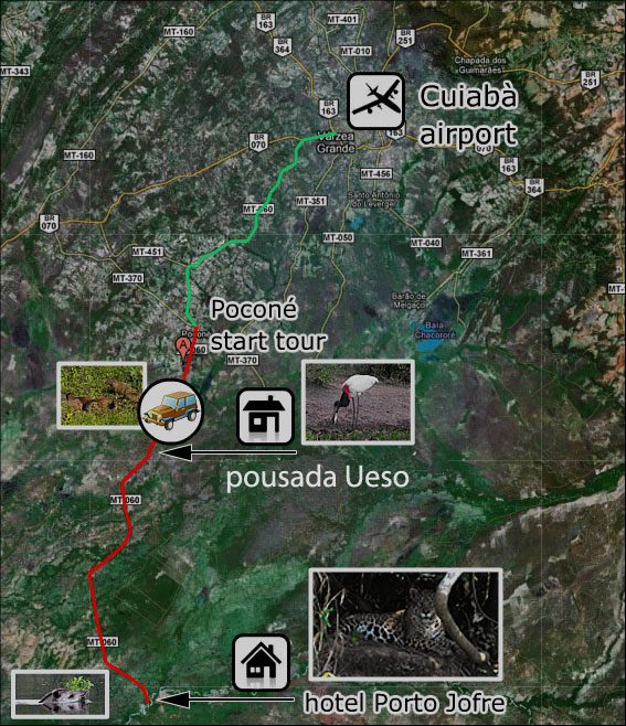 Pantanal_Tour1
